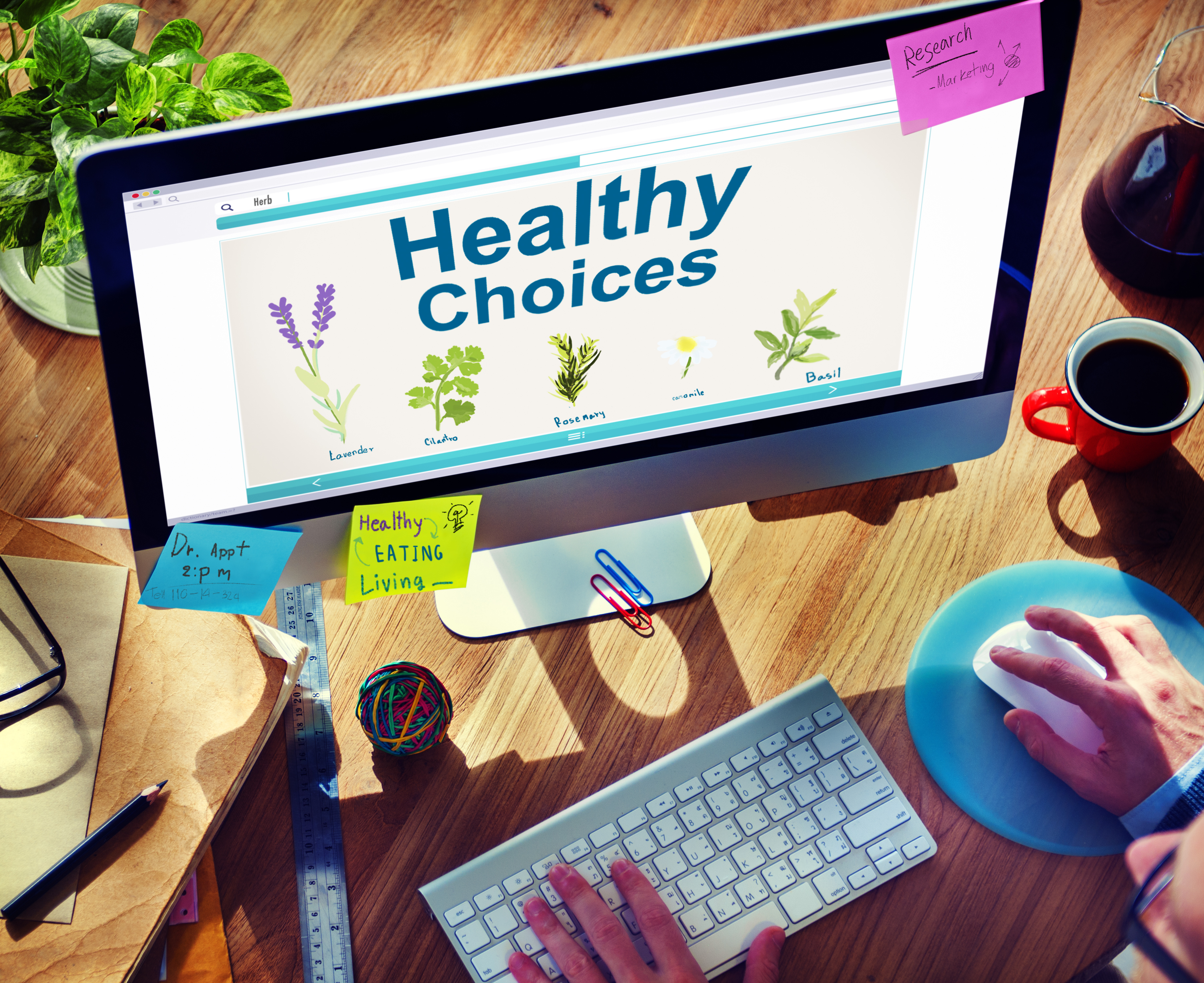 Create the Habit of Health and Success