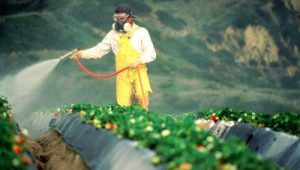 chemicals-sprayed-on-crops